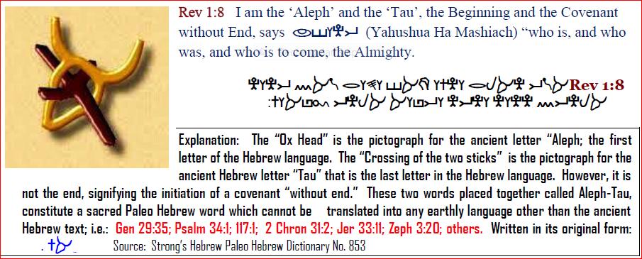 LOGO | MAN-CHILD of Book of Revelation 12:5